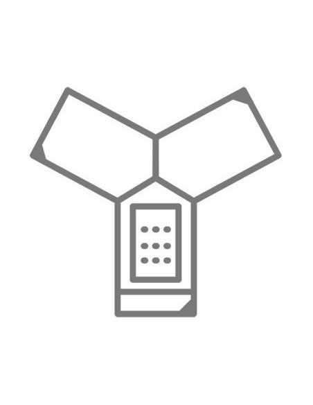 Audio conférence